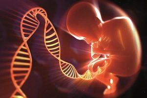 Генетическая тромбофилия анализ расшифровка